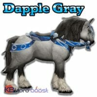 Dapple Gray