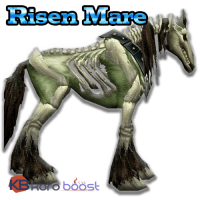 [Image: products-buy_Risen_Mare_mount_boost_3a74...00x200.png]