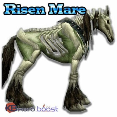 Buy Risen Mare Mount Boost cheap boost service or carry run
