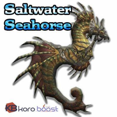 Saltwater Seahorse Mount