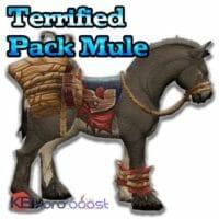Terrified Pack Mule