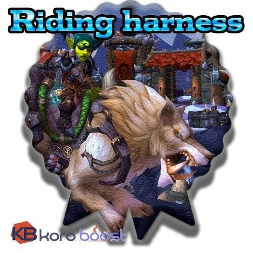 Riding Harness